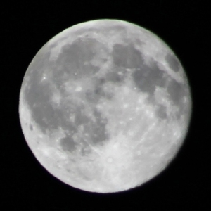 canadian-moon